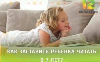 Как подружиться с книгой, как заставить ребенка читать в 7 лет?