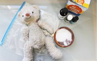 Как почистить большую мягкую игрушку — химчистка плюшевого медведя