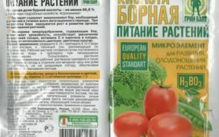 Борная кислота для помидоров опрыскивание и огурцов