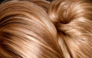 Экранирование волос что за процедура