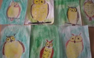 Рисуем сову с детьми 4 5 лет, как нарисовать поэтапно очки?