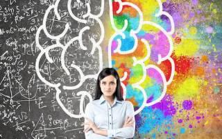 Как стать умным в школе – как сделать 33 ген для ума?
