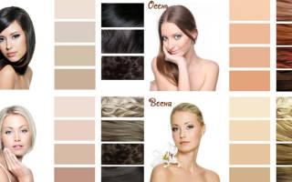 Черный цвет волос с пепельным оттенком: серый русый