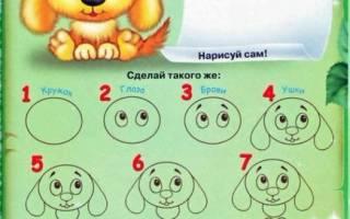 Как нарисовать собаку для детей 7 лет, щенок рисунки