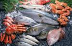 Жирная морская рыба список для еды