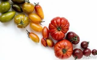 Полезные вещества в помидорах, какие витамины в томатах?