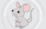 Как нарисовать мышку поэтапно для детей, мышь рисунок