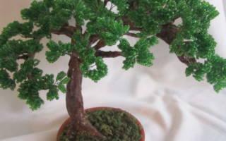 Дерево из бисера видео уроки для начинающих, бисероплетение бонсай