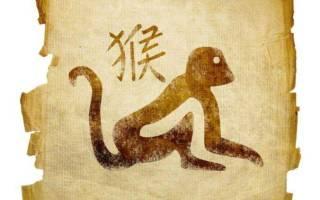 Гороскоп на год огненной обезьяны