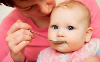 Как вводить мясо в прикорм ребенку: пюре из говядины для грудничка