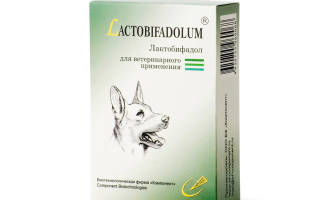 Лактобифадол для собак инструкция по применению