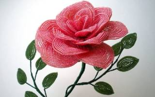 Цветочки из бисера для начинающих простые, мастер класс по бисероплетению цветов