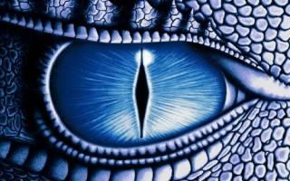 Тринадцатый знак зодиака змееносец период