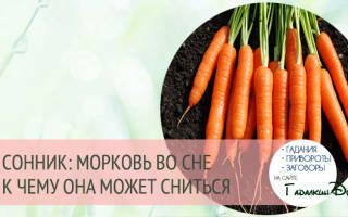 Видеть во сне морковь к чему