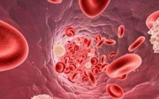 Лейкоциты 3 5 в крови у женщин