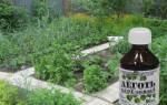 Деготь березовый применение в саду и огороде – дегтярное мыло в садоводстве