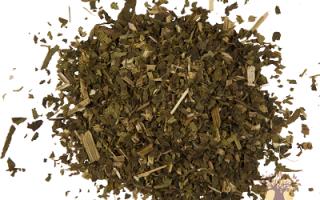 Трава кирказон, филильник лечебные свойства