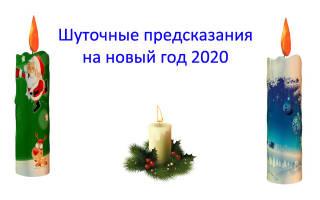 Новый год для знаков зодиака – новогодние предсказания