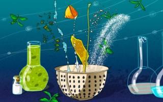 Натуральные чистящие средства для дома