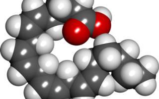 Арахидоновая кислота где содержится