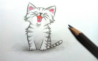 Как нарисовать котенка с милыми глазками карандашом – рисунки маленьких котят