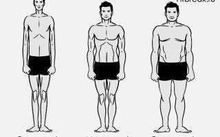 Тест на тип телосложения для мужчин, мезоморф вес