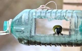 Как сделать кормушку из 5 литровой бутылки?