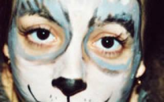 Макияж собаки на лицо – как нарисовать мордочку волка?