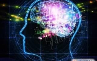 Чем отличается гипотеза от теории?