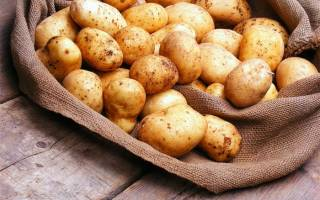 Когда можно давать картофельное пюре грудничку – как приготовить картошку для первого прикорма?