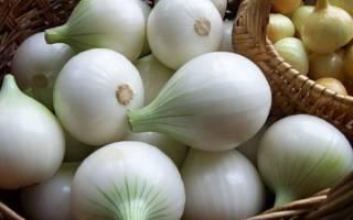 Белый лук в сравнении с обычным
